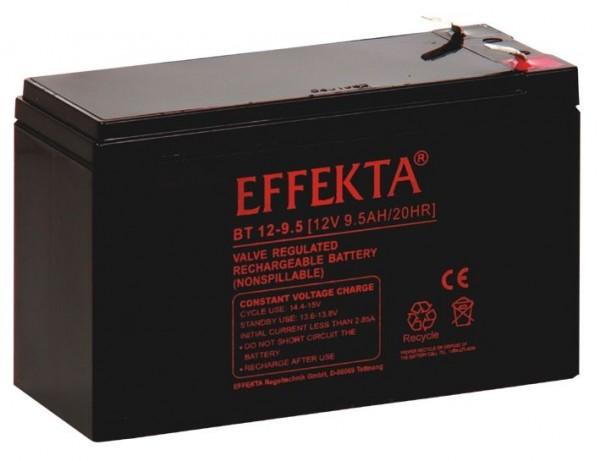 ALLNET USV Ersatzbatterie,12V-9,5AH ALL92401