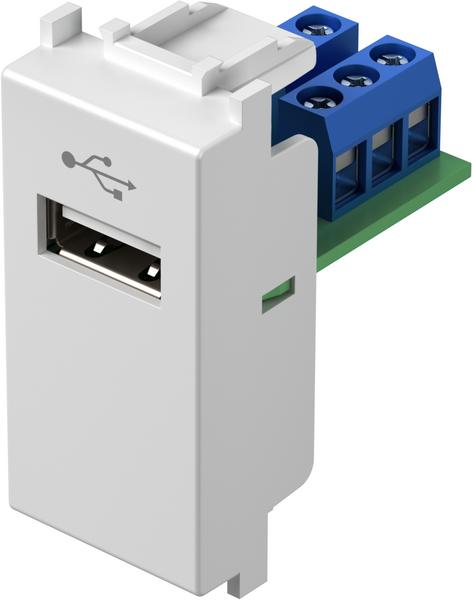 TEM Serie Modul Steckdosen SOCKET USBTIP A 1M PW