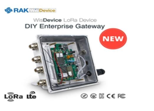 RAK Wireless DIY LoRaWan Outdoor Gateway RAK7249-13-142 LORA 16RX 868MHz, EG95-E