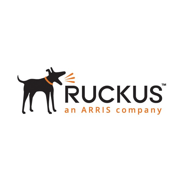 RUCKUS License Upgrade ZoneDirector 1125 von 25 auf 50 APs