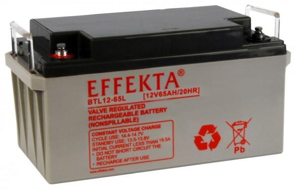 Effekta zbh. Akku 12V/ 65Ah, 10-Jahresbatterien