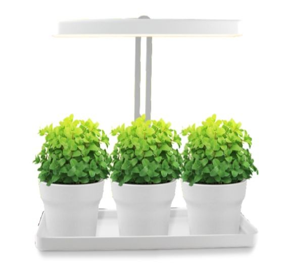 Synergy 21 LED Flora Line Pflanzenlampe 20W